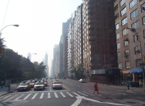 A view of Central Park versus de city