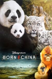 "<strong class=""MovieTitle"">Born in China</strong> (2016)"