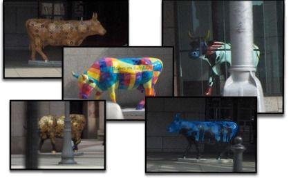 Photos: Vaches