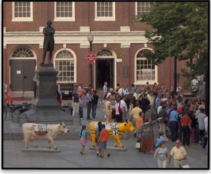 Photo: Vaches a Faneuil Hall