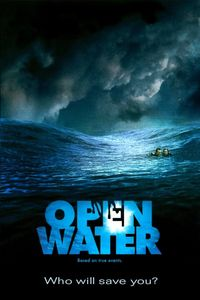 "<strong class=""MovieTitle"">Open Water</strong> (2003)"